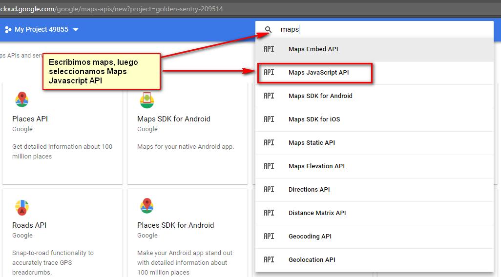 Activar Maps Javascript